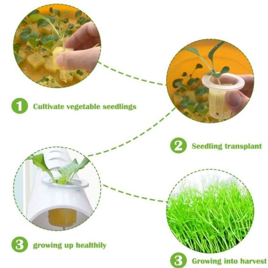 hydroponics kit store online